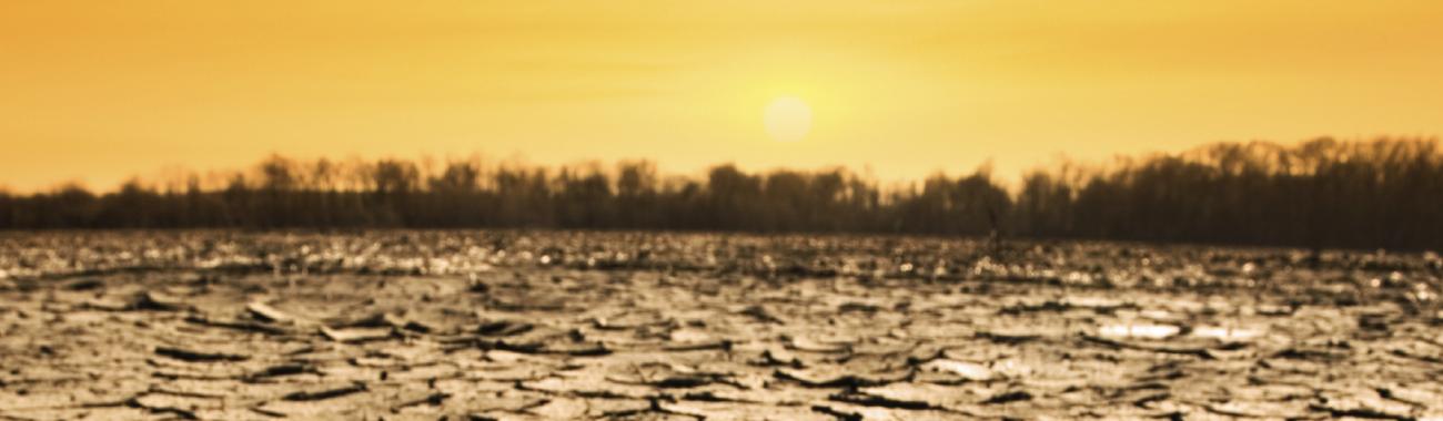 Climatechangebanner.full